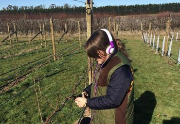 Catriona helping with pruning in the holidays